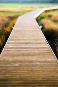 A raised walkway offers a broad perspective of a landscape.