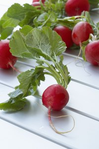 Red radishes with green leafs are the most popular varieties.