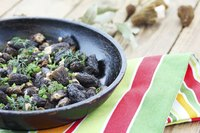 Pan-fry reconstituted morels in olive oil and sprinkle with fresh herbs for a light, simple, earthy-tasting salad.