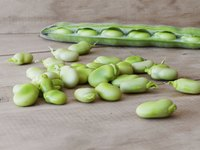 Young and mature butter beans come in inedible pods.