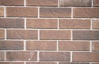 Brick that isn't exposed to much sunlight is more suseptible to mold growth.