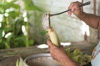 A close-up of a woman making a tamale.