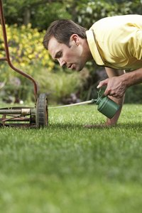 Be careful not to drip oil on your lawn when changing oil or oiling squeaky wheels.