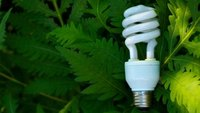 List of Go Green Business Ideas for the Entrepreneur