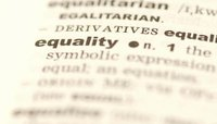Advantages and Disadvantages of Equality in the Workplace