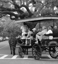 Charleston is a family-friendly city on the South Carolina coast that is a popular Southern tourist destination. Charleston boasts a rich history ...