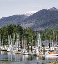Just off the southwestern coast of British Columbia, Vancouver Island beckons with its rugged beaches, lush forests and quaint towns. Whether you ...