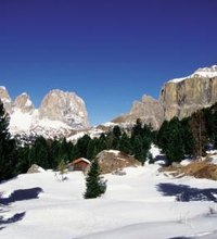 Most people envision Italy as a sun-drenched Mediterranean paradise, but winter is not the time to hit the beach.  It is the time to hit the slopes, ...