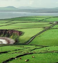 Ireland's Ring of Kerry is a driving loop in the southwest, comprising quintessential Irish scenery such as small seaside villages, dramatic ...
