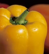 Bell peppers are particularly colorful veggies and members of the nightshade family, which also includes tomatoes and eggplants. They tend to be ...