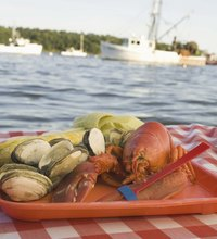 From the mainstream salmon and shrimp to the elite Maine lobster and Blue Point oyster, demand for fruits de mer has made seafood a lucrative on-land ...