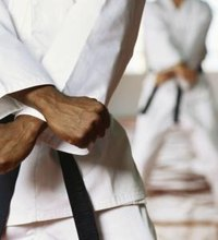 Martial arts – classified as a vigorous form of activity by the U.S. Department of Health and Human Services – facilitates weight loss as a ...