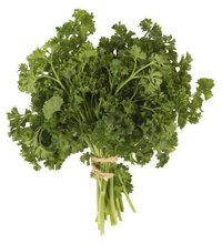 With a bright, fresh flavor, fresh parsley juice adds life to your homemade juice blends and smoothies. It pairs well with other green vegetable ...