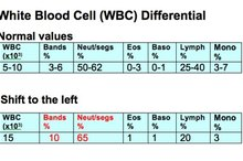 What Is a Shift to the Left in Blood Testing?