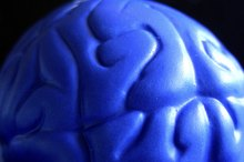 A Brain Injury and Frontal Lobe Damage