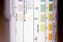 Color of Urine Strips for Ketosis
