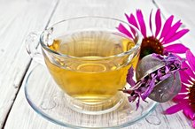 The Side Effects of Echinacea Tea