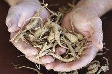How to Use Dried Ginseng Root