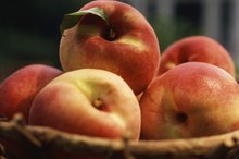 Glycemic Index of Peaches