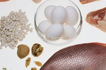 USDA Recommendations of Protein in Diet
