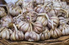 Does Garlic Increase Estrogen?