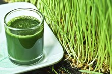 Difference Between Wheat & Wheatgrass