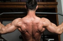 High Reps & Muscle Hyperplasia
