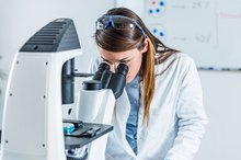 What Causes Epithelial Cells in a Urinalysis?