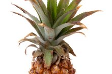 Nutritional Facts of Dole Pineapple Juice