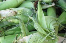 Benefits of Cornsilk