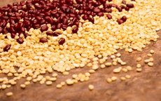 What Is Pea Protein?