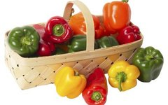 When Are Bell Peppers Ready to Harvest?