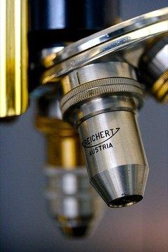 A microscope objective lens