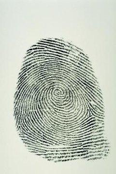 Children can identify the basic patterns found in fingerprints.