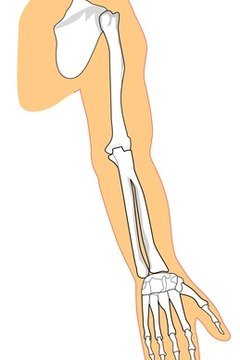 ball and socket joint. a shoulder is ball and socket joint. joint