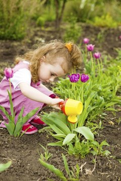 Exploring the outdoors shows preschoolers how spring helps plants grow.