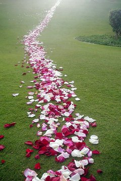 Flowers are considered good luck in Hawaii.