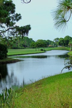 Views of a golf course offer a beautiful and relaxing environment for a book club outing.