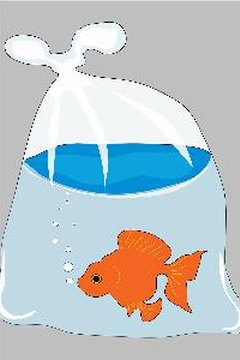 Bringing home a goldfish for the first time can be an exciting moment for a child.