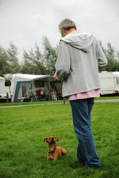 Standing relaxed and calm is especially important if you have a nervous or sensitive dog.