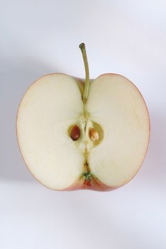 Apple seeds are virtually indigestible.