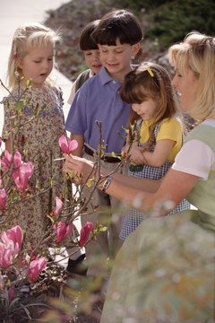 When exploring outdoors, explain any plant parts not covered in the lesson.