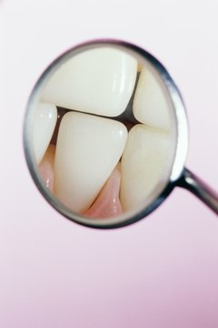 Body parts like teeth can be analyzed for isotope concentrations.