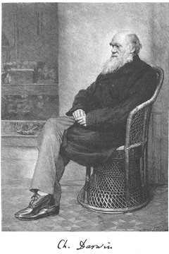 Modernist writers explored the theories of Charles Darwin in a social context.