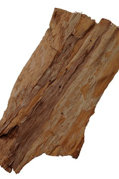 Driftwood by itself might be as plain as a stick of wood. Add moss.