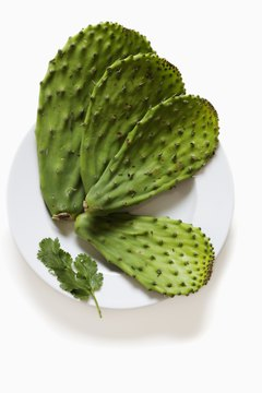 Nopales deliver healthy nutrients.