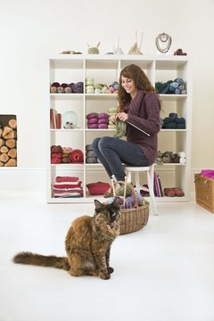 Provide the right mix of light and dark, high and low in a new cat room design to appeal to a cat's every mood.