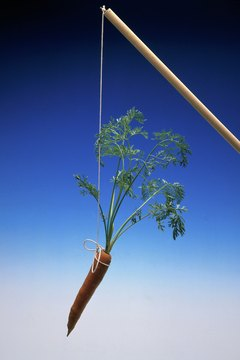 The idiom of a carrot dangling off of a stick references the thing that motivates you to work.