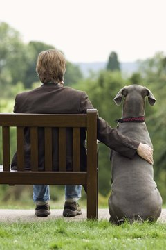 With training, your pooch may get along with someone he dislikes.