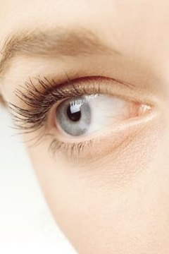Insects That Live on Human Eyelashes | Animals - mom me